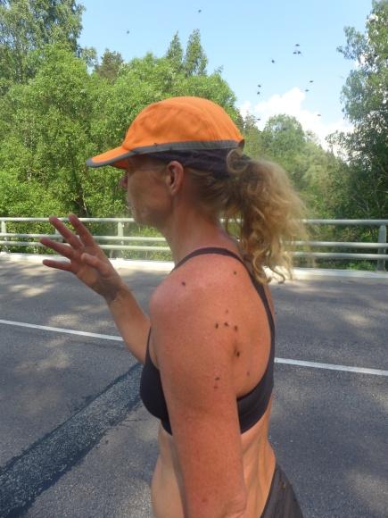 Det var så sjukt med flugor. Fattar bara inte varför de hänger med oss!!! Luktar vi eller..